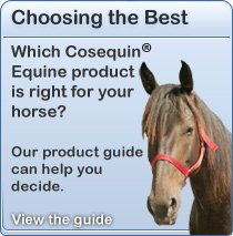 Which Cosequin Equine product is right for your horse? Our product guide can help you out.